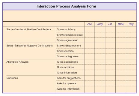 Interaction Process Analysis Form Coaching and Consulting - training needs analysis template
