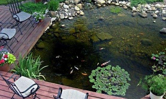 Backyard Homey Design Backyard Fish Pond 67 Cool Ideas Garden Pinterest Designs Maintenance Tilapia From 41 Ponds Backyard Garden Pond Design Pond Landscaping
