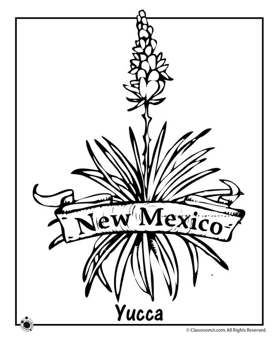 mexican flowers coloring pages - photo#3