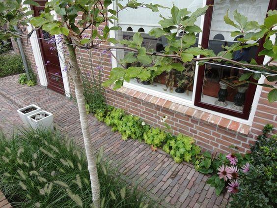 Paadje is mooi met kleine stenen veel ruimte en toch groen tuin pinterest tes tuin and met for Tuin decoratie met stenen