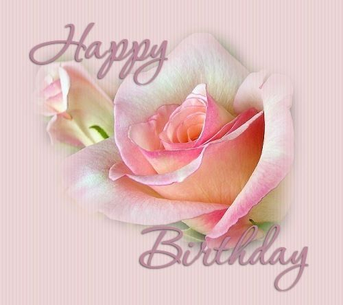 Happy birthday pink roses