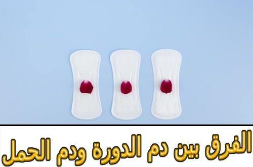 الفرق بين دم الدورة ودم الحمل Convenience Store Products Convenience Store