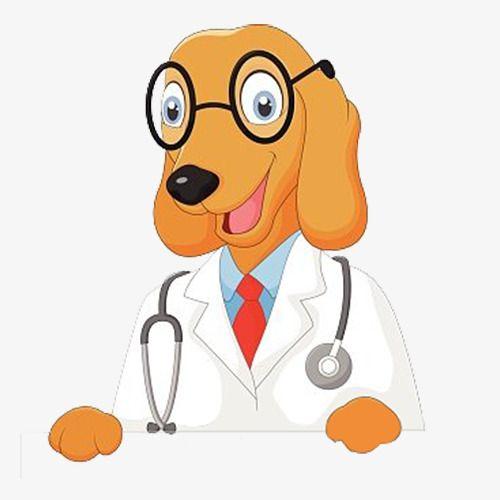 Cartoon Doctor Dog Dog Doctor Animal Doctor Cartoon Dog