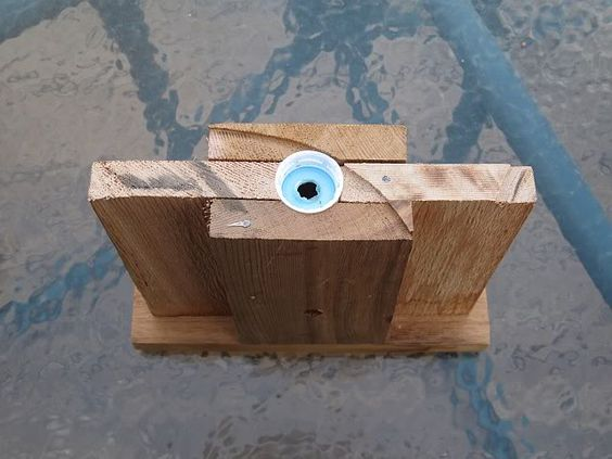 Carpenter Bee Trap - QDMA Forums