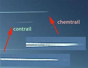 Image Search Results for chem trails: