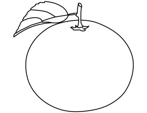 Naranja Para Colorear Fruit Coloring Pages Coloring Pages Free Coloring Pages