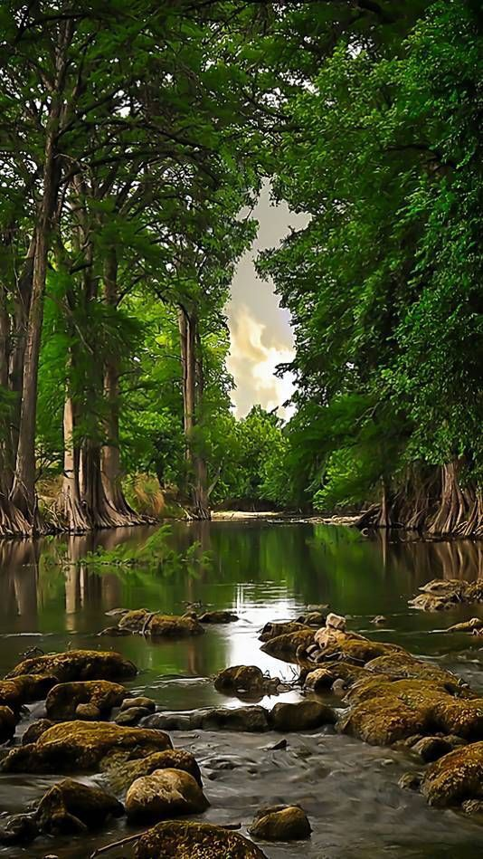 River Nature From Webapp Zedge Net Beautiful Nature Beautiful Landscape Photography Beautiful Photos Of Nature