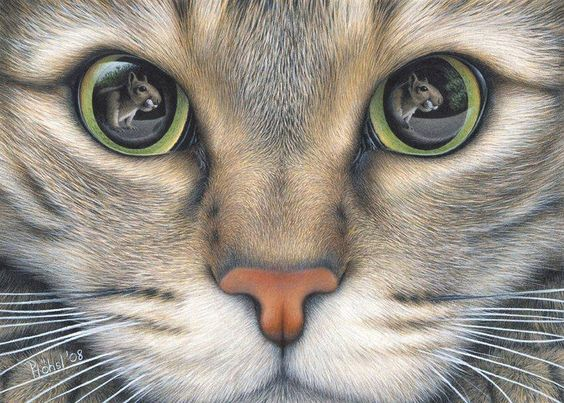 Colored Pencil on Paper by Peter Hohsl: