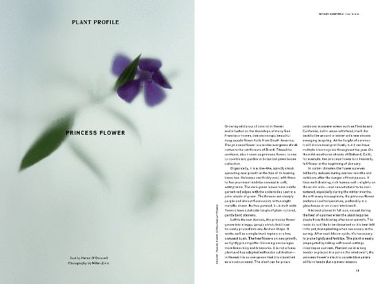 Wilder quarterly #gardening #magazine