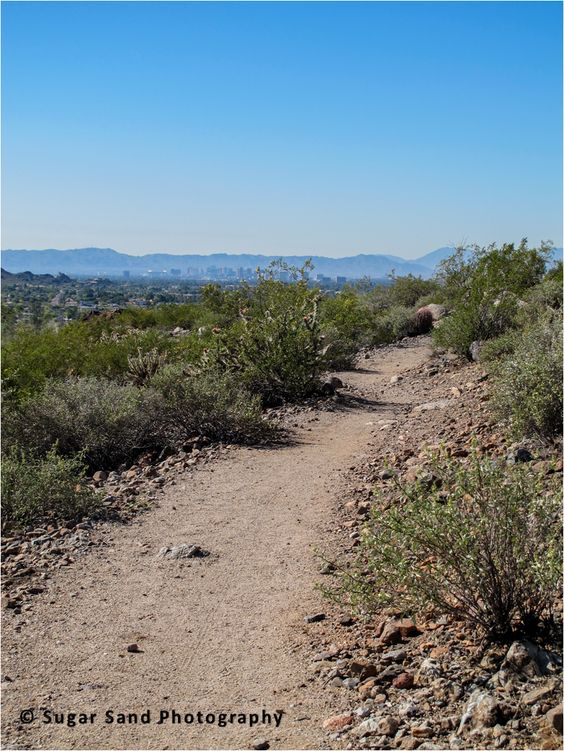 Hiking Trail in the North #Phoenix Mountain Preserve. A beautiful place.   #Arizona #vacation #travel #photography #nature