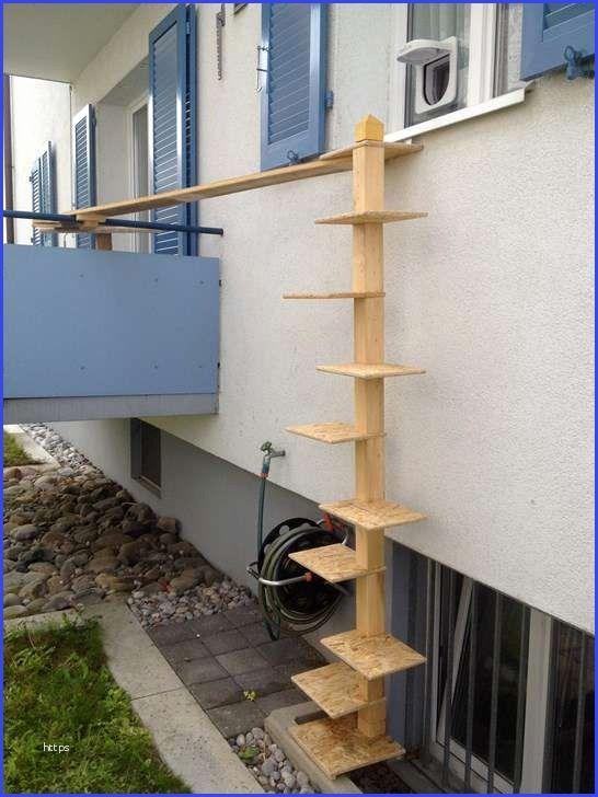 Katzenleiter Balkon Katzenleiter Balkon 1 Stock 2018 Balkon Bank Katzen Treppe Katzenleiter Katzentreppe