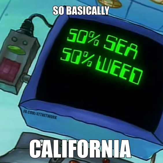 Cali loves weed. and the sea.