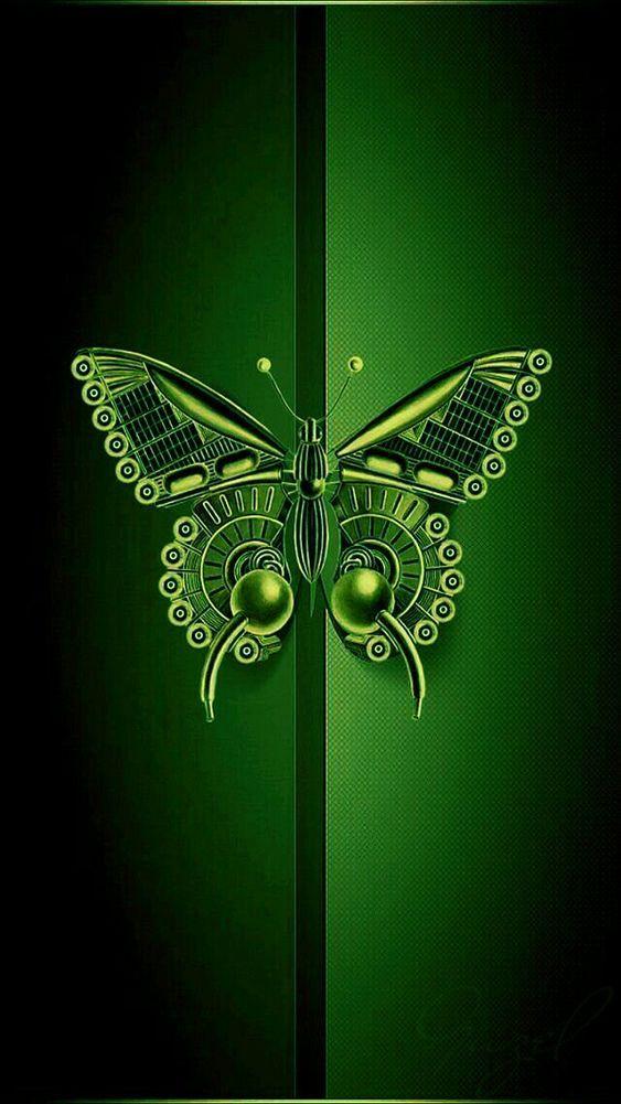 Wallpaper Hitam Hijau Hd : wallpaper, hitam, hijau, Hitam, Wallpaper, Indonesia, Butterfly, Wallpaper,, Pretty, Wallpapers,, Backgrounds