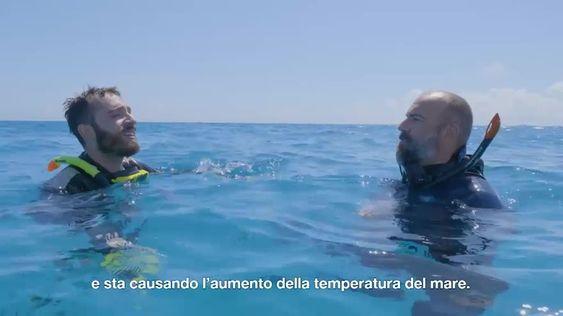 Rivedi il video 'Piacere Maisano - Il cambiamento climatico. Puntata 1' di TV8
