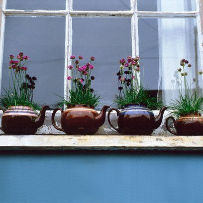 Tea pot window boxes