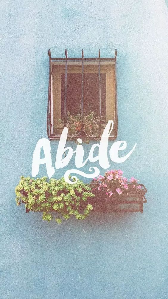 """I am the vine, you are the branches. Abide in Me."" - Jesus:"