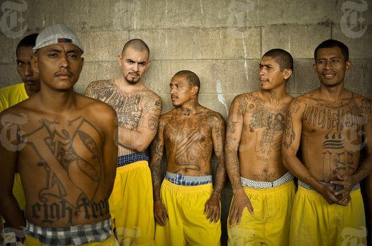 gang membership in the us Ms-13 is paying smugglers to coach gang members on how to game the us  immigration system, teaching underage members to claim uac.