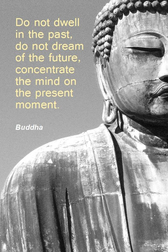 Do not dwell in the past, do not dream of the future, concentrate the mind on the present moment. Buddha. Want to see how well you are doing with your nutritional habits? Get your FREE No Obligation Wellness Evaluation TODAY! www.WellnessScore.co.uk