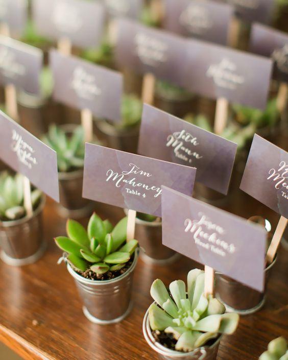 cadeau invité diy mariage plantes