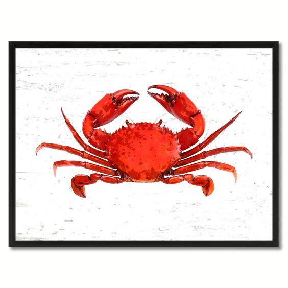 Red Crab Canvas Prints Home Decor Wall Art Gift Ideas Picture Frame Decoration