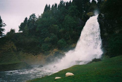 #nature #naturaleza #landscape #paisajes