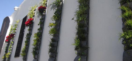 Las mejores formas de poner un hermoso jardín pequeño cuando te falta espacio
