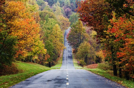 But you still take leaf peeping trips along the open road, just for fun.