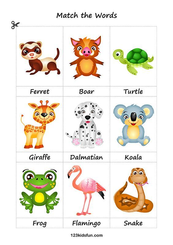 Printable Flashcards 123 Kids Fun Apps Printable Flash Cards Flashcards For Toddlers Animal Flashcards