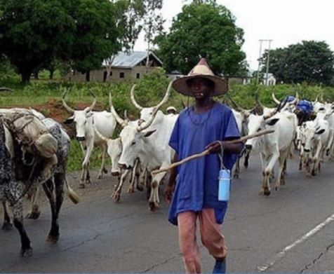 Fg Opens Radio Station To Reach Herdsmen Across The Country Ogun