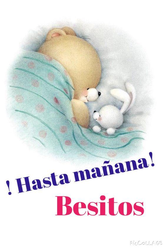Buenas noches 💤🌷