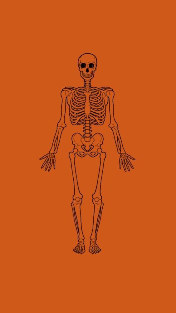 This Is Halloween This Is Halloween Halloween Halloween Halloween Halloween Orange Aesthetic Orange Wallpaper Orange Tumblr
