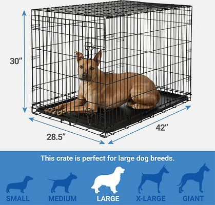 Single Door Collapsible Wire Dog Crate