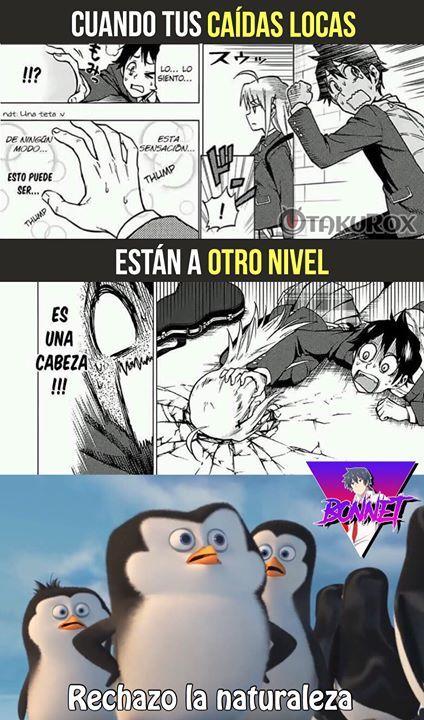 Xd Bonnet Kyun Sigueme Para Mas Anime Meme En Espanol Memes Otakus Memes Espanol Graciosos Memes