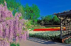 Biltmore House, Asheville NC Gardens