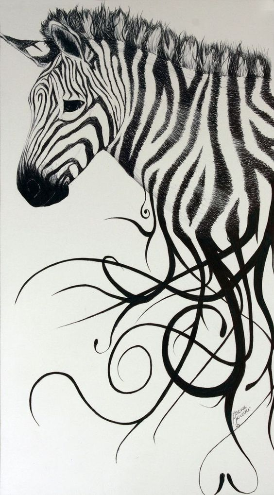 exotic animal drawing - Google Search