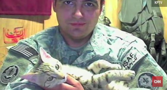 This Cat Saved This Soldier�s Life