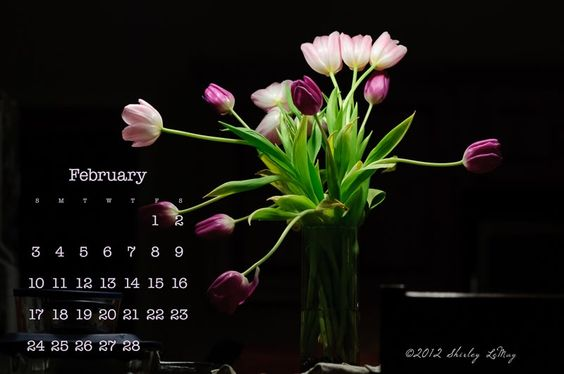 Free Download - February 2013 Calendar