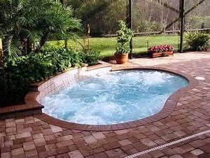 Small Inground Pool Cost Jburgh Homes Easy Affordable Small Inground Pools Designs Aménagement Jardin Clôture Petite Piscine Piscine Et Jardin