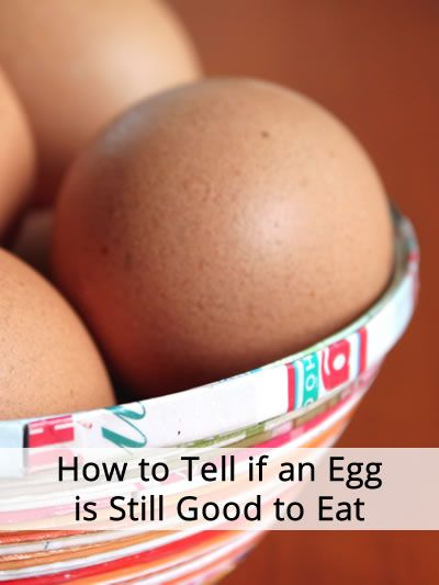 How to know an egg is bad or fresh? Bad Egg Floats, Fresh Egg ...