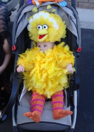 This little Big Bird Baby Costume was made entirely from scratch without any patterns. Wowzer! The Big Bird costumes I found for sale we not that appealing to me, but I did find some other good Sesame Street costumes: Elmo, Cookie Monster, The Count, etc.