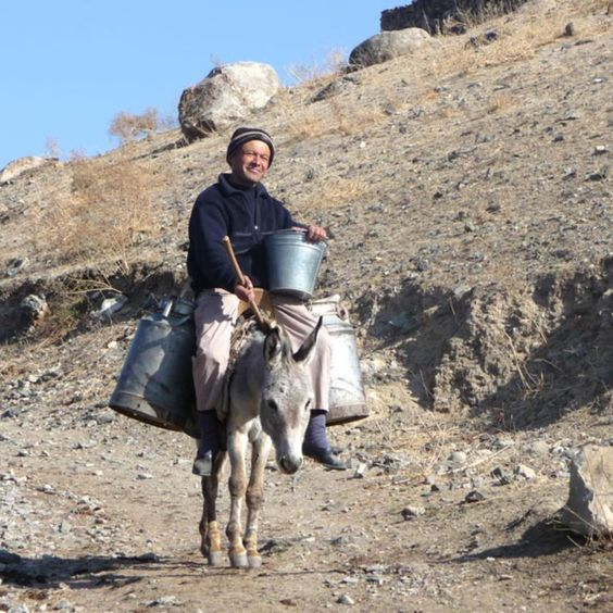 Uzbekistan rural tour#Uzbekistanruraltour