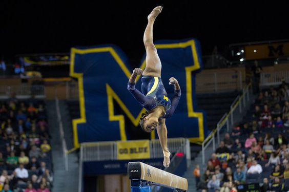 Image result for michigan women's gymnastics