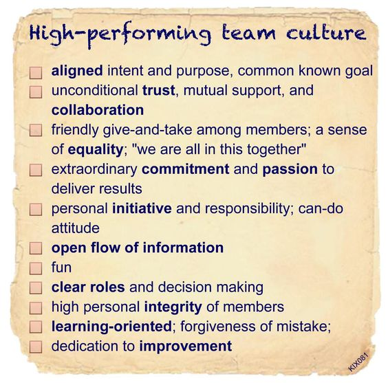 High-performing team culture