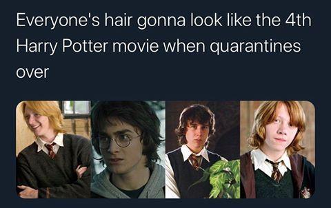 Harry Potter In 2020 Funny Harry Potter Jokes Harry Potter Memes Hilarious Harry Potter Puns