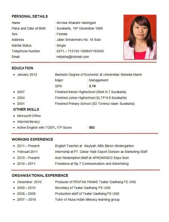Professional Job Resume Template - Professional Job Resume ...