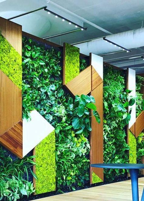 Greenwall Ca Green Wall Vertical Garden Wall Lights