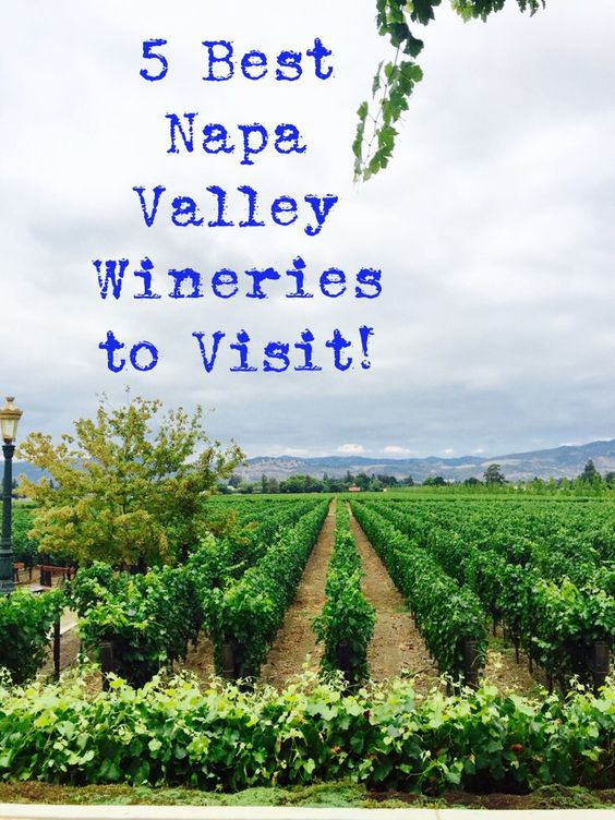 The 5 Best Napa Valley Wineries to Visit!! Read why it's worth traveling to California to experience wine tasting and great food at these wineries!