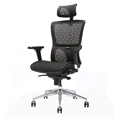 Ergonomic Mesh Office Chair Ensien Multidirectional Adjustable