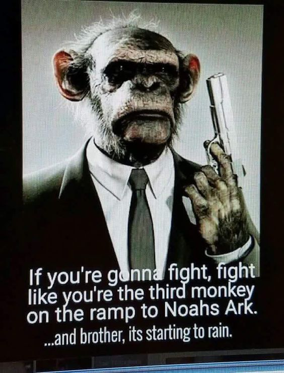 Sometimes you have to fight like a monkey.