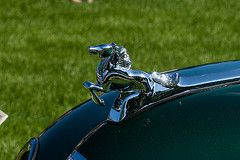 IMG_20080803_5372 (cheshire_wayne) Tags: horse ornament hood